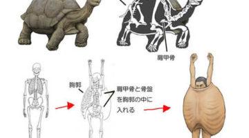 Иллюстратор наделяет людей скелетным строением разных животных