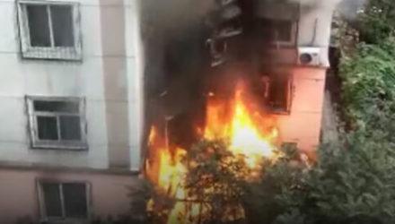 Приехав тушить огонь, пожарные выяснили, что у них нашлись помощники