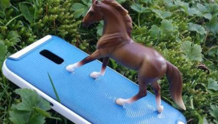 Приклеенная к телефону игрушечная лошадь теперь присутствует на каждом фото своей хозяйки