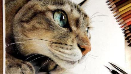 Гиперреалистичные нарисованные кошки выглядят как живые
