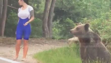 Общение с диким медведем чуть было не закончилось слишком плохо