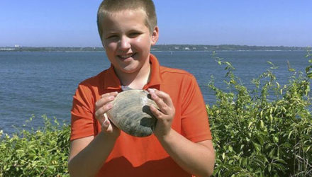 Удачливый мальчик обнаружил очень крупного моллюска