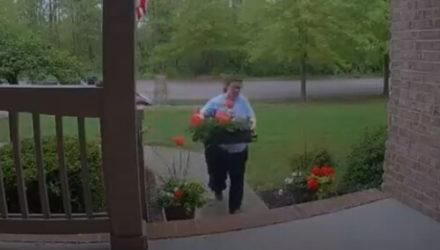 Пытаясь спасти цветы от непогоды, хозяйка уничтожила их