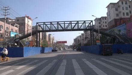 Мать семейства потратилась на два пешеходных моста